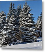 Winter Scenic Landscape Metal Print