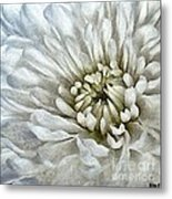 Winter Shade Of Pale Metal Print