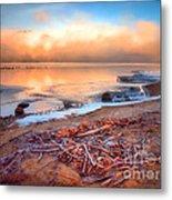 Winter Shore Metal Print
