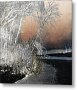 Winter Shroud Metal Print