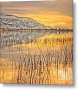 Winter Solstice 5 Metal Print