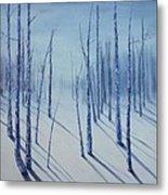 Winter Splendor Metal Print