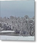 Winter Storm 2010 Metal Print