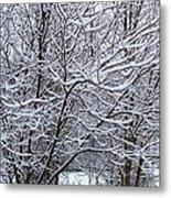 Winter Storm Metal Print