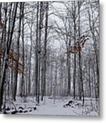 Winter Storm In The Forest Metal Print