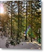 Winter Sun Flares Metal Print