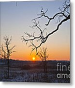 Winter Sun Ornament Metal Print