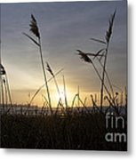Winter Sunrise In Newport Ri Metal Print