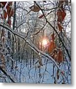 Winter Sunset 2 Metal Print