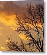 Winter Sunset In Pa Metal Print