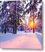Winter Sunset Through Trees Metal Print