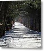 Winter Trail Metal Print