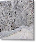 Winter Travel Metal Print