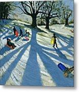 Winter Tree Metal Print by Andrew Macara
