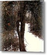 Tree With Ice Metal Print