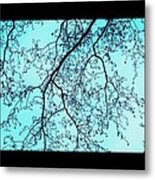Winter Tree Metal Print by Cathy Jacobs