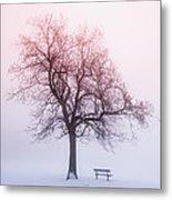Winter Tree In Fog At Sunrise Metal Print