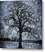 Winter Tree In Snowfall Metal Print