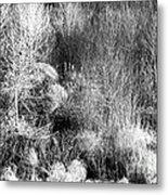 Winter Trees B And W 6 Metal Print