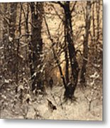 Winter Twilight Metal Print