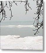 Winter Under The Apple Tree Metal Print