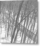 Winter Urban Wood Metal Print
