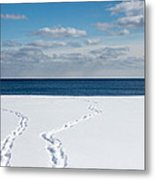 Winter Walks Metal Print