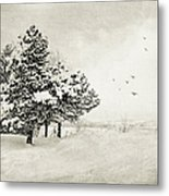 Winter White Metal Print by Julie Palencia