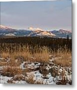 Winter Wilderness Landscape Yukon Territory Canada Metal Print