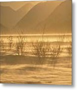 Winter Wind Storm W Blowing Snow Metal Print