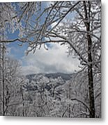 Winter Window Wonder Metal Print