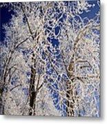 Winter Wonderland 7 Metal Print