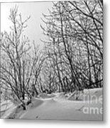 Winter Wonderland Monochrome Metal Print