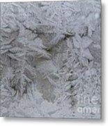 Winter Wonderland Series #01 Metal Print