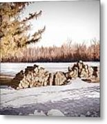 Winter Wood Metal Print