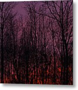 Winter Woods Sunset Metal Print