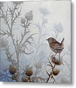 Winter Wren Metal Print