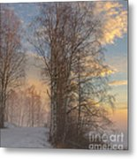 Winterday Metal Print by Sylvia  Niklasson