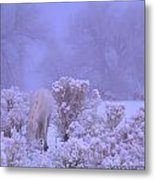 Winter's Blanket Of Snow  Metal Print by Jeanne  Bencich-Nations