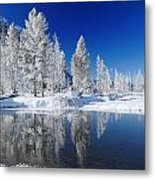 Winter's Chill Metal Print