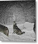 Winters Eve Howling Metal Print