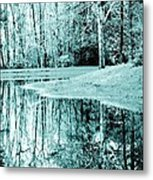 Winter's First Snowfall Metal Print