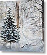 Winter's Peace Metal Print