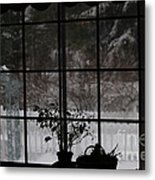 Winters Reflection Metal Print