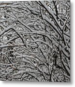 Winters Weight Metal Print