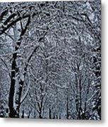 Winter's Work Metal Print