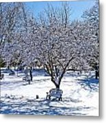 Wintry Day At The Park Metal Print