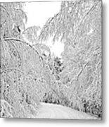 Wintry Road Metal Print