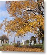 Wisconsin Boneyard 2 Metal Print