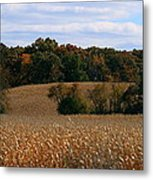 Wisconsin Fields In Late Summer Metal Print